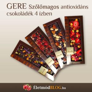 gere-csoki-eletmod-2013-11-08