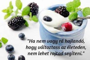 hazi-joghurt