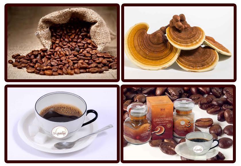 ganoderma-kave-3